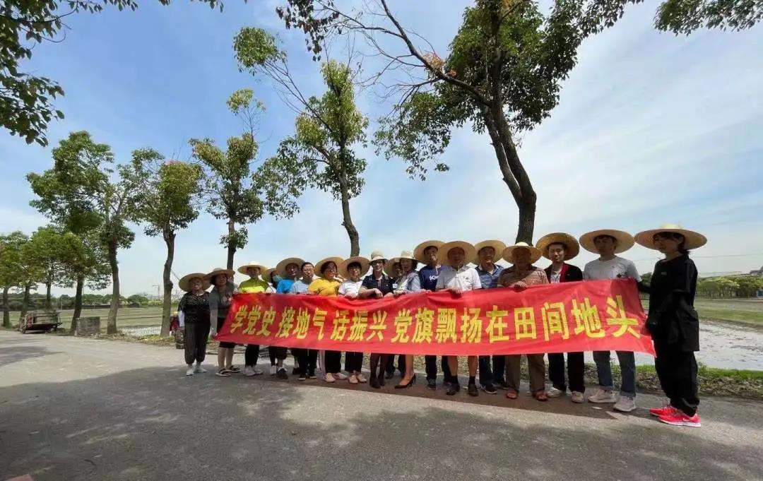 罗泾镇:学党史接地气话振兴党旗飘扬在田间地头